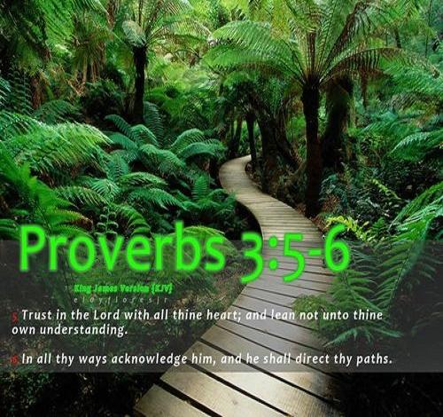 proverbs 356